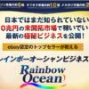 志村康善 レインボーオーシャンビジネス(Rainbow Ocean)