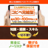 白石正人 Money Innovation System