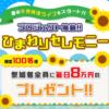 ひまわりセレモニー-HIMAWARI ceremony- 香野沙也加